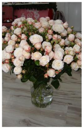 K4 - Kytička staroružových drobnokvetých ruží