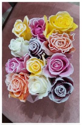 B3 - VIP farebné ružičky z Holandska