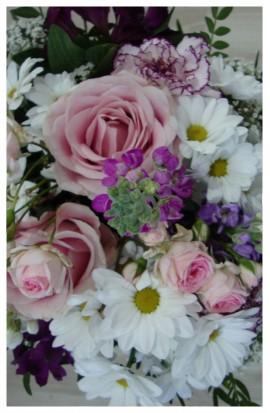 K45 - Letný mix kvetov