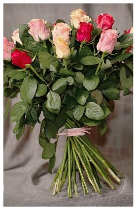 KM1 - Pestrofarebné ruže sú tu pre Vás