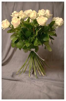 KM3 - Bielo-smotanové ružičky